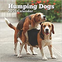 Humping Dogs Funny Dog Calendar Lover Gag Gifts Men Women Smeeks Aaron
